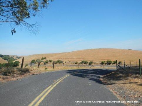 McEwen-along the ridge