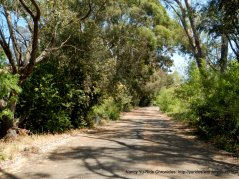 through Benicia State Park