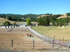 horse ranch on Reliez