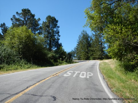 to the top-Grizzly Peak Blvd