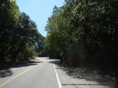 gentle terrain-Redwood Rd