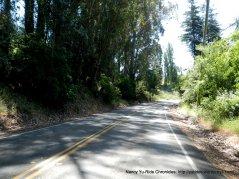 Redwood Rd to Skyline Blvd