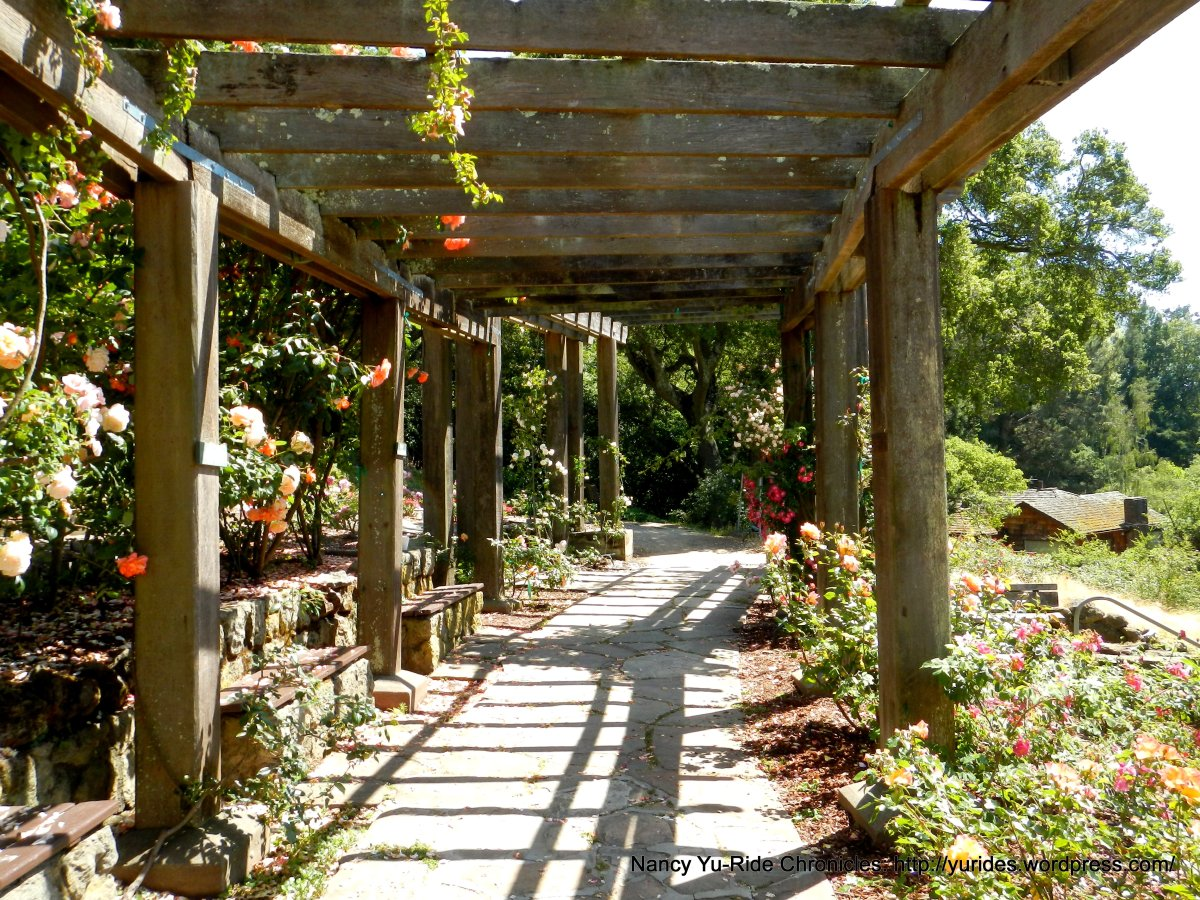 berkeley rose garden | Ride Chronicles