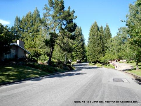 Lombardy Lane
