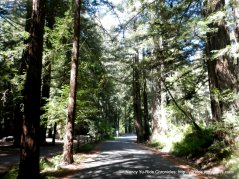 paved trail thru the campground