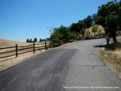 steep turn to the ridge