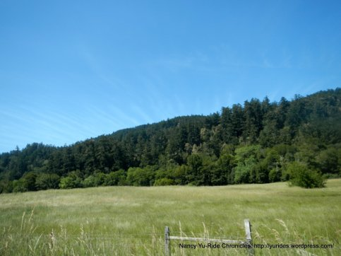 forests and grasslands