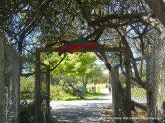 Calle Del Mar entrance to beach