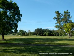Hillcrest Community park-Concord