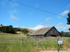 old barn on Tunitas Creek