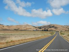 on Pt Reyes Petaluma Rd