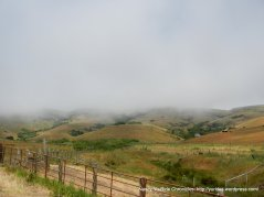 gorgeous hills with rolling fog