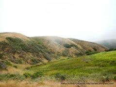 gorgeous hills