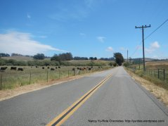 on Chileno Valley Rd