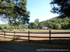 horse farm-Novato