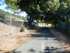 bike path to Miller Creek