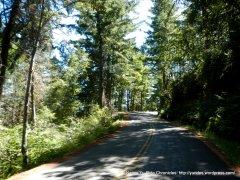 descend t hrough the woods
