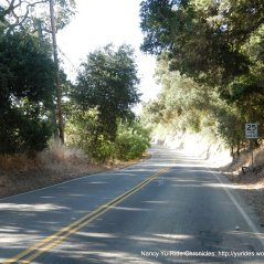 climb up Foothill Rd to Sunol
