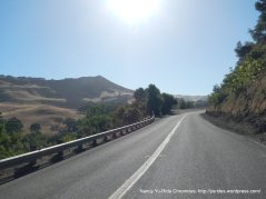 Calaveras Rd through Sunol Regional Wilderness