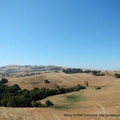 view of the golden hillsides