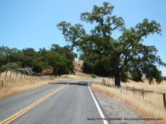 2nd climb on Mt Hamilton Rd