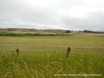 expansive pastoral lands