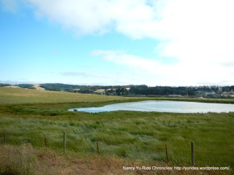 stock pond-Valley Ford Rd