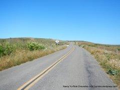 along the ridge line
