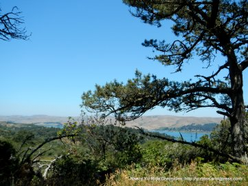 view of Tomales Bay