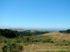 view of Pt Reyes Seashore