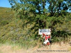 top of climb-Ruthy sign