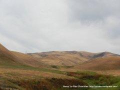 beautiful open grasslands