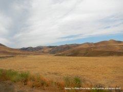 wide open meadows