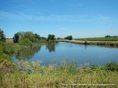 Delata waterway