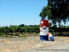 Clarksburg vineyards
