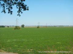vast farmlands