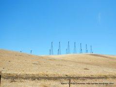 wind mill farm