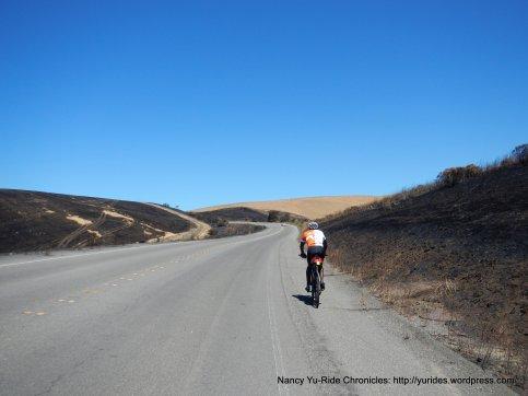 control burn hillsides