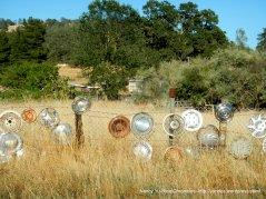 Hubcap Ranch