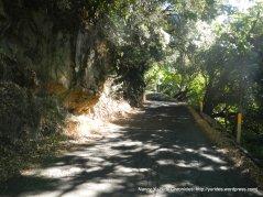 narrow bumpy road