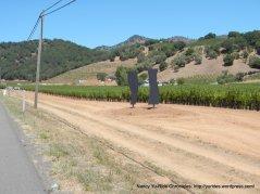 vineyard art