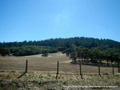 open hillsides