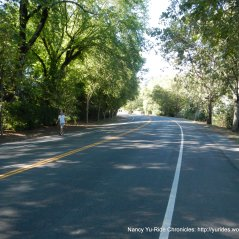 descend to Calistoga