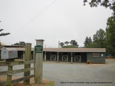 Grizzly Peak Stables
