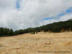 Sonoma Valley Park