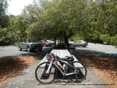 Lunch stop-picnic area