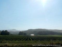 rich agricultural lands
