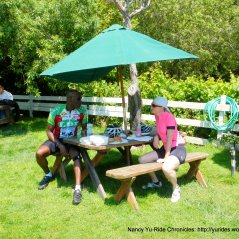 Norm's Market picnic area