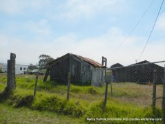 old wood shack