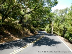 climb up Wildcat Canyon